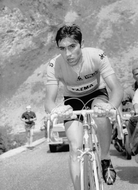 Eddy_Merckx
